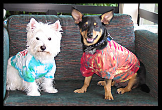 Dorothy and Pepe modeling Doggie T-Shirts