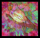 Hand Dyed Fabric - Kid's Quilt Parrot